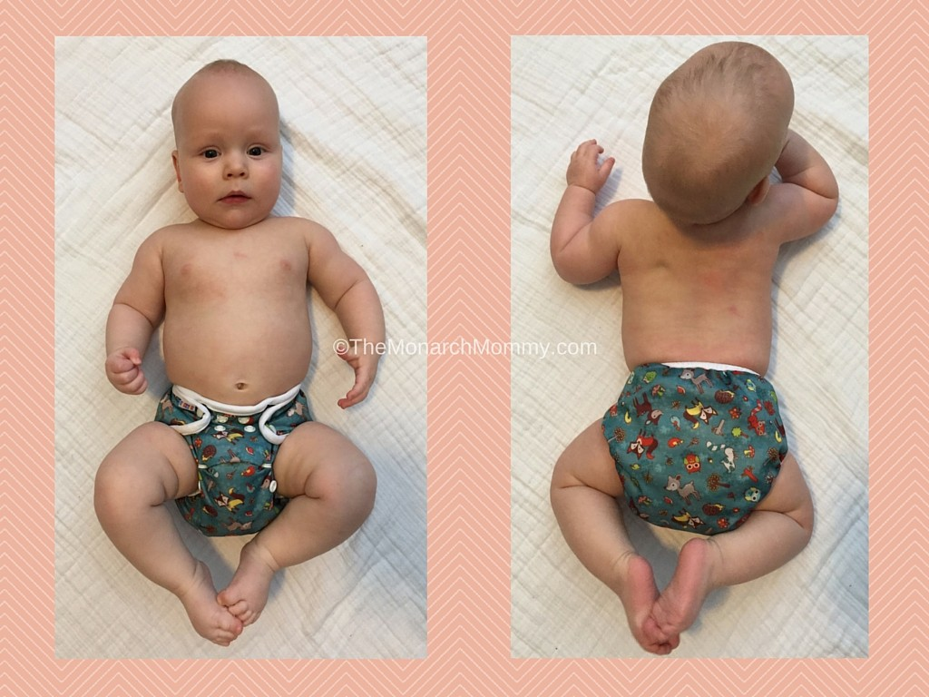 Bummis All-In-One Cloth Diaper Review