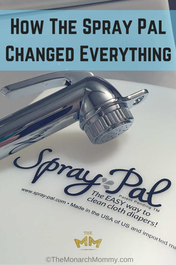 How The Spray Pal Changed Everything