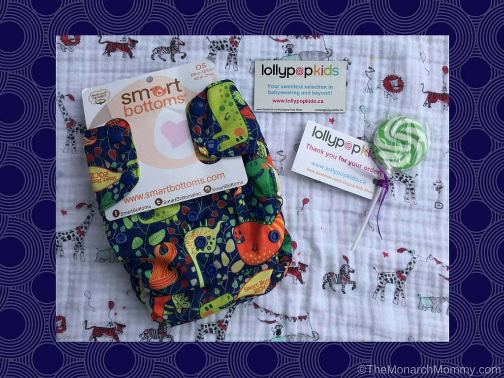 Smart Bottoms 3.1 AIO Cloth Diaper Review
