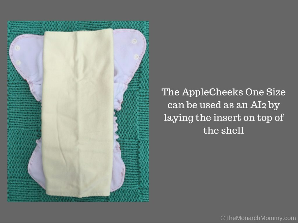 AppleCheeks One Size Diaper? Oh Yes They Did!