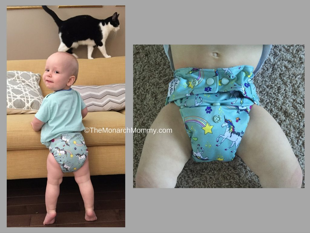 GroVia Hybrid Cloth Diaper System