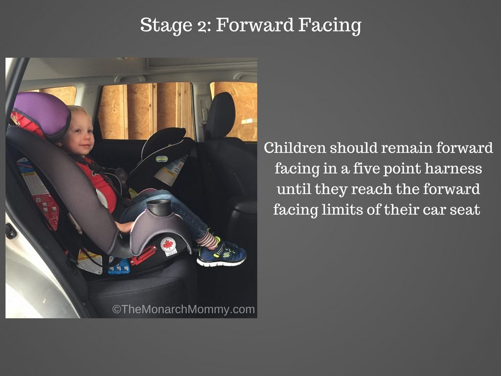 Quick Tips For Buckling Up Your Most Precious Cargo
