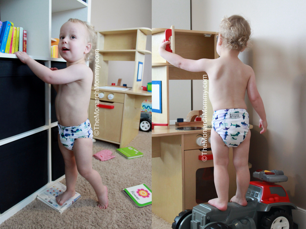 Lighthouse Diaper All In One Review